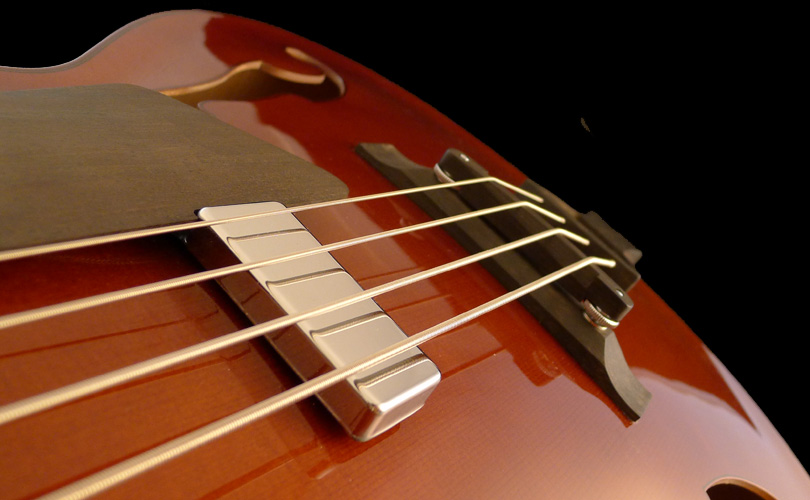 micro basse-archtop