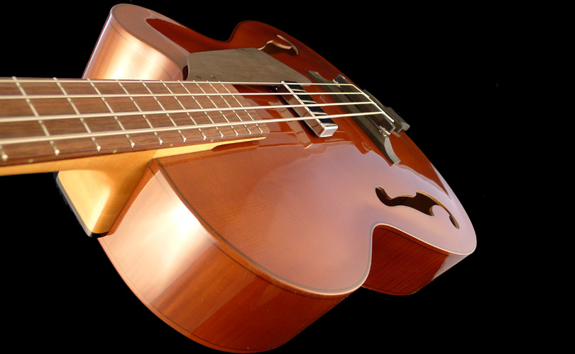 profile basse-archtop