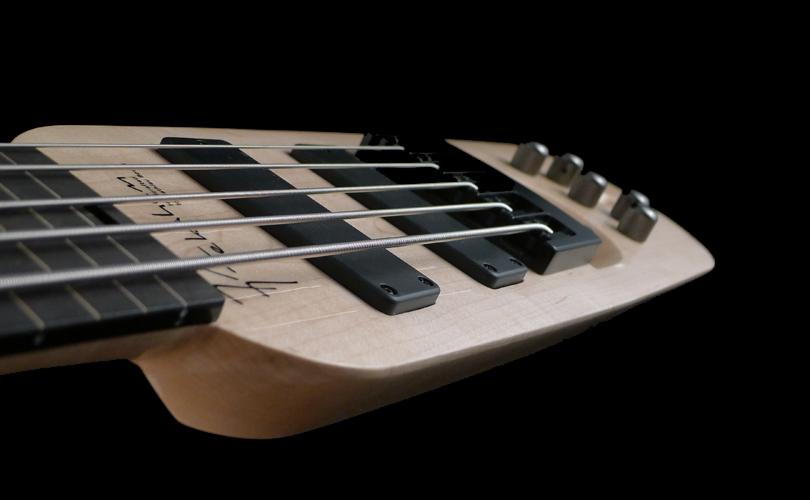 stick bass